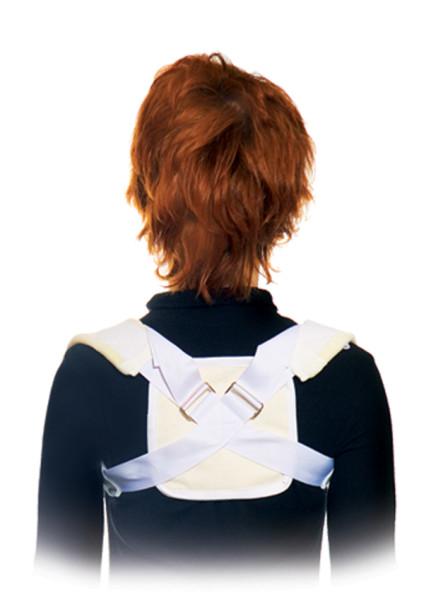 ключицы, плечевого пояса) - вид сзади.